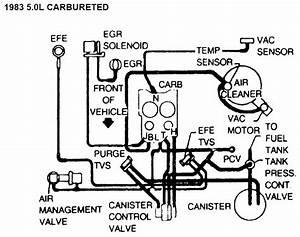 Vacuum Lines Diagrams    I Got Them All