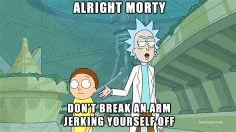 Rick And Morty Meme - rick and morty memes barnorama