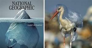 israel creative writing essay on environmental pollution in 100 words essay on environmental pollution in 100 words