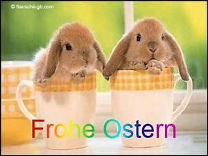 Frohe Ostern Lustig : home meets hammrich frohe ostern ostern ~ Frokenaadalensverden.com Haus und Dekorationen