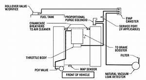 32 2003 Dodge Ram 1500 Evap System Diagram