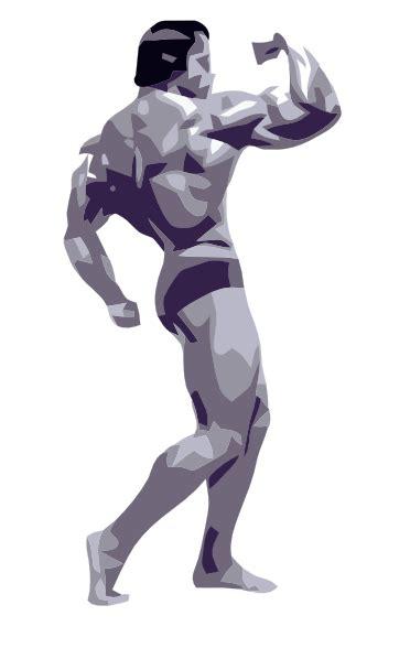posing body builder clip art  clkercom vector clip