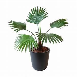 Mini Plante Artificielle : mini plante artificielle ~ Teatrodelosmanantiales.com Idées de Décoration