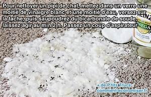 Enlever Odeur Urine Chien : l 39 astuce pour nettoyer un pipi de chat facilement ~ Nature-et-papiers.com Idées de Décoration