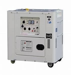 6 5kva Diesel Generator Wiring Diagram With Electric Start