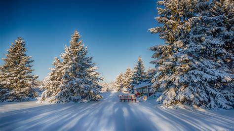 foto de Paysage en hiver wallpaper Fond d'écran HD
