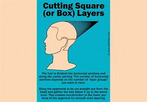 How To Cut Square Layers Or Box Layers