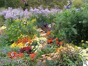 Parterre De Plante : les plantes de massif fiches pratiques ~ Melissatoandfro.com Idées de Décoration