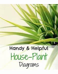Handy Helpful House