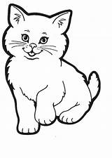 Cat Coloring Pages Cats Colouring Printable Kitty Colour Sheets Sheet Printables Kitten Kittens Para Paper Template Clipart Desenhar Cartoon Dog sketch template