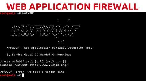 web app penetration testing  web application