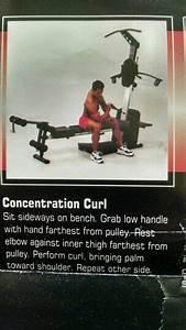 Diet Chart For Abs For Concentration Curl Bowflex Workout Workout Chart Bowflex
