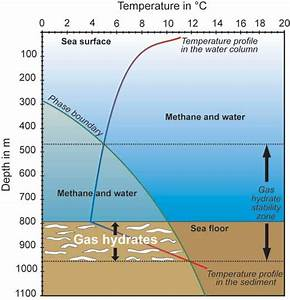 Cold Seeps  Marine Ecosystems Based On Hydrocarbons