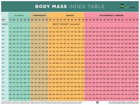 bmi poster bmi chart poster body mass index poster