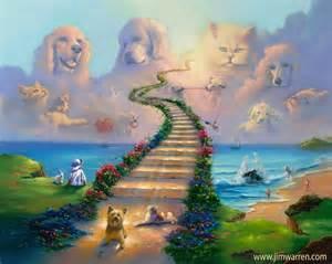 rainbow bridge for cats rainbow bridge memorials friends rockin rescue