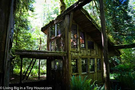 House In The Forest by This Enchanting Cabin In The Forest Will Leave You