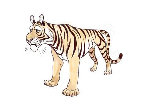 big cat drawings tiger celia bullwinkel