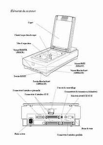 Epson Gt9500 Scanner Download Manual For Free Now