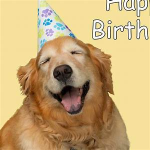 Happy Birthday Dog Funny