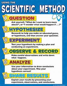 what are the steps to the scientific method - DriverLayer ...