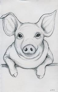 How To Draw A Realistic Pig Face