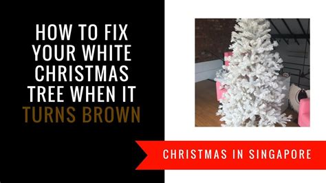 christmas tree turning brown how to fix a white tree that has turned yellow or brown