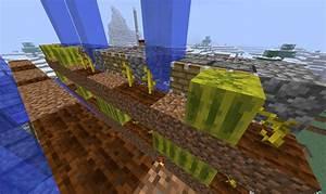 Talk:Melon (block) – Official Minecraft Wiki