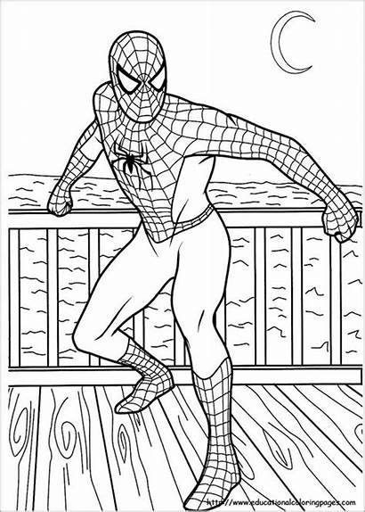 Spiderman Coloring Colouring Pages Template Spider Printable