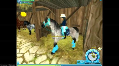 stable star andalusian buckskin buying