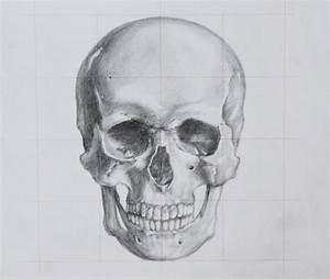 Blank Skeletal System Diagram Quiz Vertebra System Quiz ...