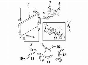 Ford Edge Radiator Coolant Hose  Upper   Edge  Mkx  W