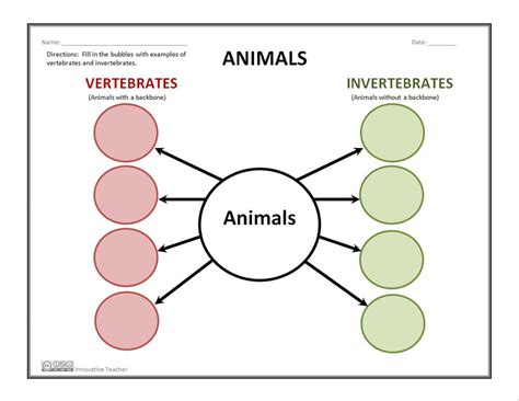 favorite vertebrates and invertebrates worksheets for