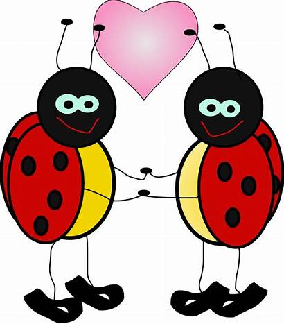 Transparent February Bug Clipart Clip Animated Pinclipart