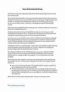 About Environment Essay Bowling For Columbine Essay Report Essay  About Environment Essay In Kannada Hindi Sample Nursing Essays Help Writing A Book also Analysis And Synthesis Essay  What Is Thesis Statement In Essay