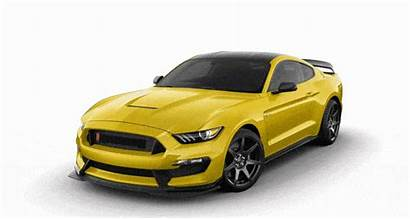 Roof Gt350r Mustang Shelby Ford Colors Stripes
