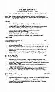 Computer Skills Resume Example Nurse Resume Example Professional Rn Resume