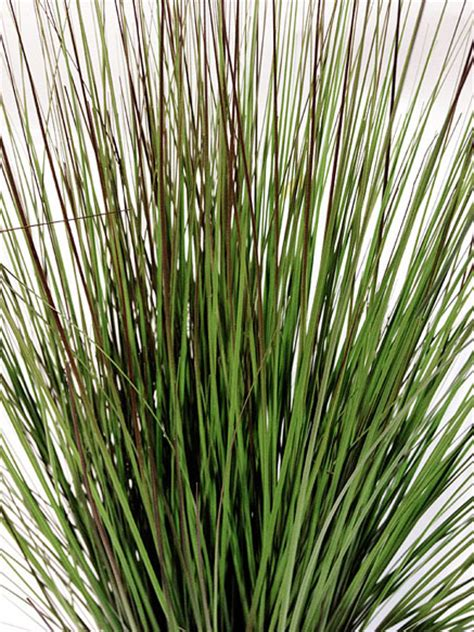 contemporary spider plants artificial grass plants