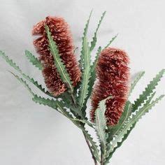 artificial australian native christmas wreath 1000 images about wreath on australian flowers artificial