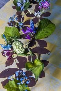 Reagenzgläser Für Blumen : tischdeko blumen mit 10 reagenzgl ser g rten f r auge seele ~ A.2002-acura-tl-radio.info Haus und Dekorationen