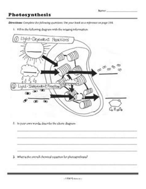 photosynthesis worksheet photosynthesis pinterest photosynthesis and worksheets