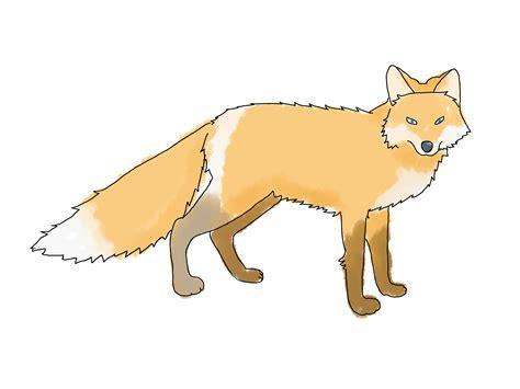 4 Ways To Draw A Fox