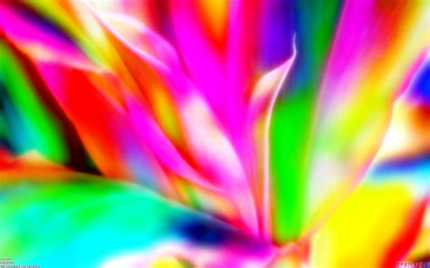 Bright Colored Backgrounds (66+ Images