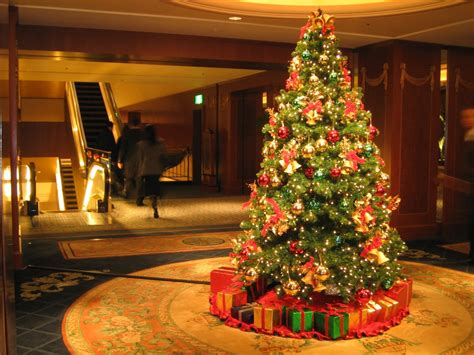 24 Stunning Christmas Tree Images