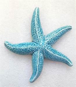 Etoile De Mer Dofus : etoile de mer bleue en c ramique accrocher boutique idellia au centre de hy res ~ Medecine-chirurgie-esthetiques.com Avis de Voitures