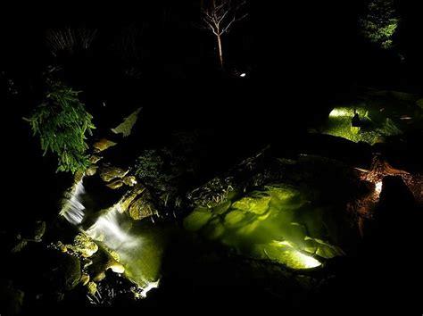 Landscape And Pond Lighting