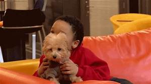 Puppy Hug GIFs - Find & Share on GIPHY