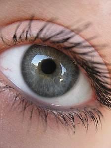 10 Best images about Eyes on Pinterest   Amazing eyes ...