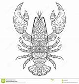 Lobster Line Coloring Tattoo Shirt Vector sketch template