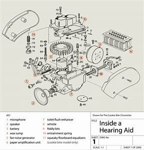 Anatomy Of A Hearing Aid