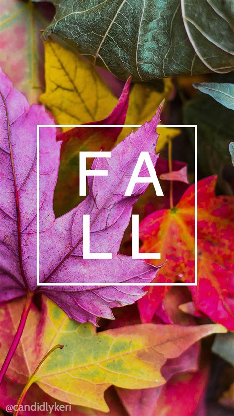 fall leaves iphone wallpaper wallpapercom